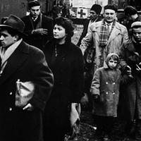 1956 szagáról és az élet elviselhetetlen könnyűségéről