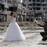 Heti képválogatás Szíriából [5.]