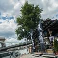 Venice Beach hangulatát árasztja a Dorko friss ropogós Balaton kollekciója