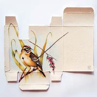 Madarak a gyógyszeres dobozokban