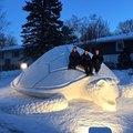 Gigantikus hóteknős az idei házi kedvenc