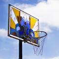Kosárlabdapalánkok, amelyeket sohasem használnál játékra