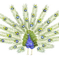 Virágszirom madarak