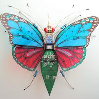 Robot rovarnemzetség Portsmouthból