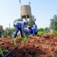 Ehető játszóterek Szíriában