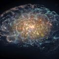 Több mint 7.5 milliárd valóság / Az agy – David Eagleman