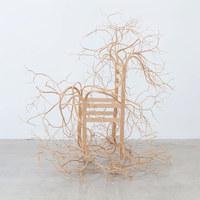 Bútorrá növő fák újragondolva
