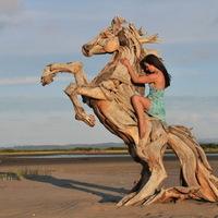 Lenyűgöző szobrok uszadékfából