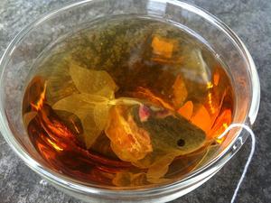 Aranyhalakat a teádba...?