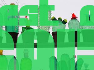 Best of 2015 – Környezetvédelem