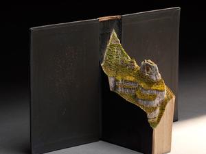 Madarak és élőhelyeik könyvszobrokkal elmesélve