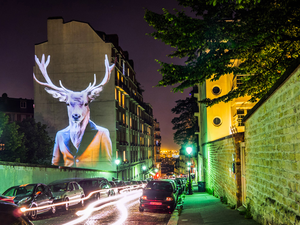 Emberállatkert Párizs utcáin