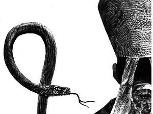 Satire and Animals - Ricardo Martinez