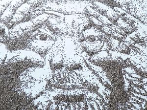 Ai Weiwei 20 ezer napraforgómagból