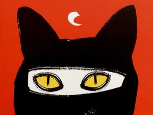 Macskám, Jugoszlávia / Pajtim Statovci