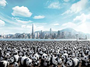 Papírmasé pandákkal a globális tudatosságért