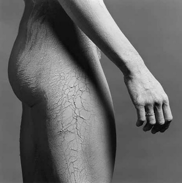 Mapplethorpe2005-0724LisaLyon1981.jpg