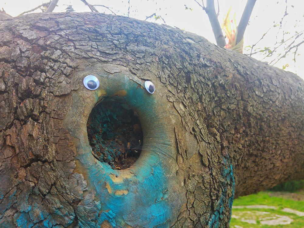 eyebombing_bulgaria10.jpg