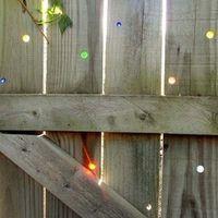 5 tipp, hogyan lesz mesés a kert