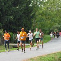Öt hónapos szünet után tekenyei dobogóval tértem vissza a futóversenyekre