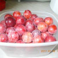 Gyümölcsleves.....