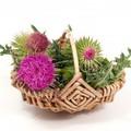 Gyógynövények és mellékhatásaik