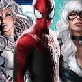 Ez lehet a Silver Sable and Black Cat története, jön még több Pókember karakter?