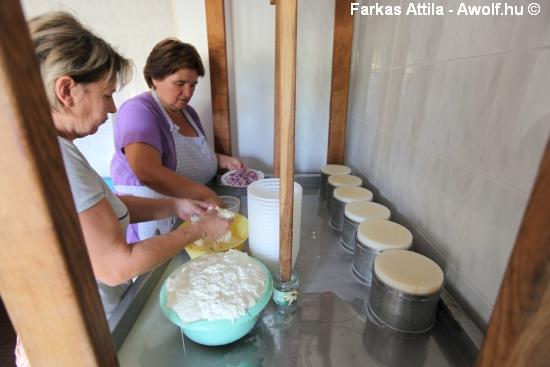 me_sajtkeszito_gonda_keszites_20120821_24.JPG