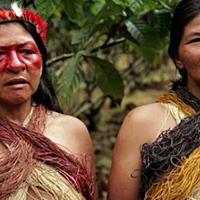 72% szénhidráton él a szuperegészséges törzs