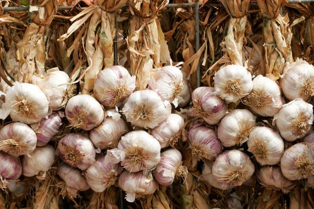 garlic_wreaths.jpg