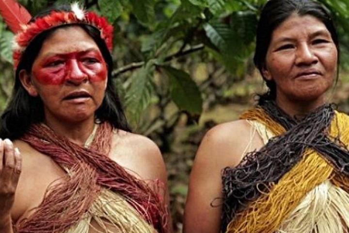 tsimane-tribe-women.jpg