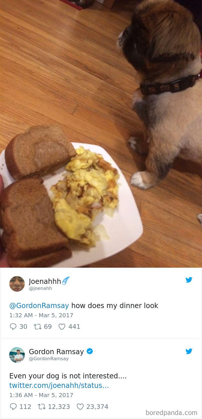 gordon-ramsay-roast-amateur-cooks-twitter-34-5a0310a6083f4_700.jpg