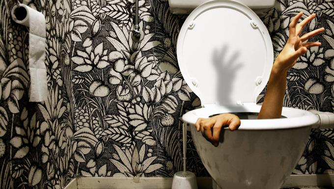 A világ legbizarrabb vécéi egy helyen