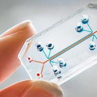 2015 az orvosi és egészségügyi technológiában