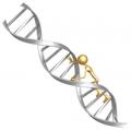 Személyre szabott genetika: Kérdések és Válaszok