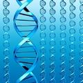 Személyre szabott genomika a sarki gyógyszertárban