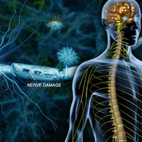 Esettanulmány: Sclerosis Multiplex és a Transzcendentális Meditáció – a 35 éves férfi újra jár