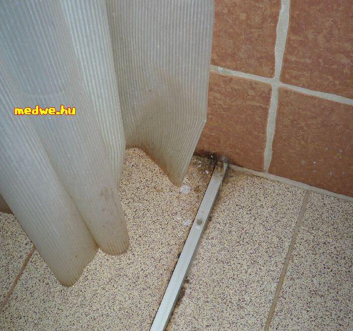 zuhanytálca az Ezüstfenyő Hotel Gold, Telkibánya szállodában