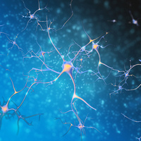 Hogyan előzheted meg a neuropátia kialakulását?