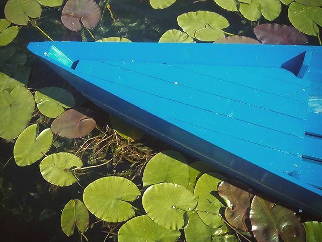 Szinek Montenegróban. Colours in Montenegro. #mertutaznijo #eupolisz #montenegro #plav #jezero #summer #travelphotography #travel #water