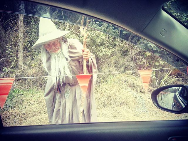 Nézd már ki stoppol! Look who's hitchiking. #mertutaznijo #eupolisz #tongariro #lordoftherings #newzealand #travelphotography #travel #gandalf