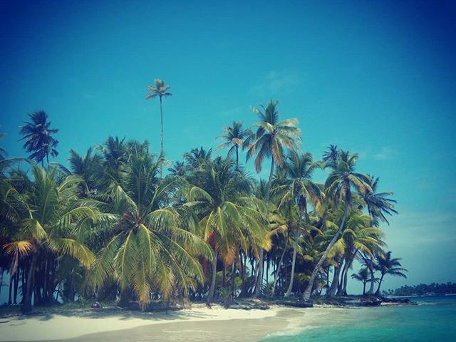 Uninhabited island somewhere in the Caribbean.  #mertutaznijo #eupolisz #caribbean #island #uninhabited #sea #sun #sand #beach #lonely #clearwater #palm @reni.atesz