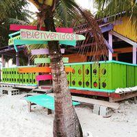 Colorful and friendly this is the Caribbean. #mertutaznijo #eupolisz #palm #sanblasislands #panama #coconut #sun  #sand #sea #bienvenidos #colors #travelphotography #travelling #travel #caribbean @reni.atesz