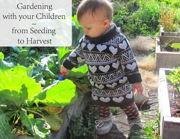 gardening-with-your-children-from-seedling-to-harvest.jpg