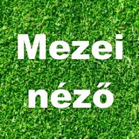 """Sopron – """"Egy féltékeny, őrült állat"""" – Gróf: Káldi Kiss András -  Ismét Figaro 2.0 – 2016. 09.26."""