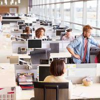 Nyolc pontban a multis munka előnyeiről