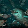 Melegvérű tengeri sárkányok