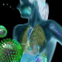 H1N1 vírus, vagyis a sertésinfluenza
