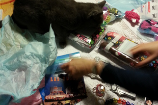 Gift package from Bugsylie and Tate