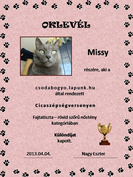 Missy's diploma